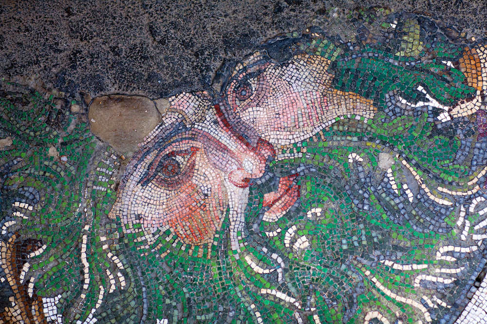 Great Palace Mosaic Museum in Istanbul Tourist Information