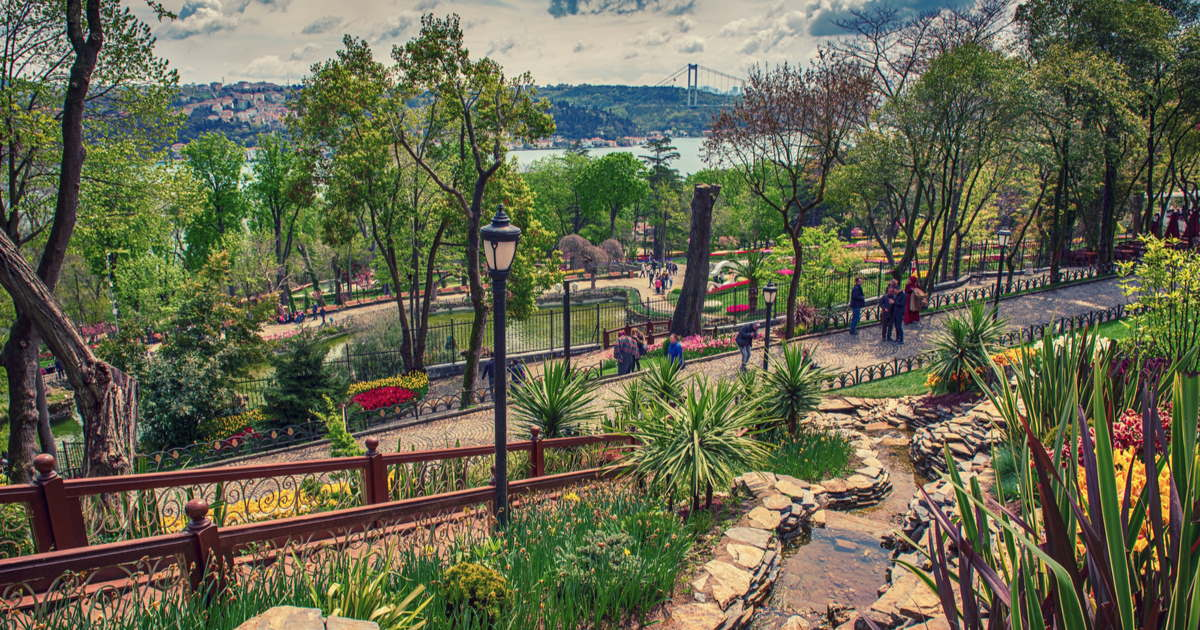 Emirgan Park in Istanbul in Turkey
